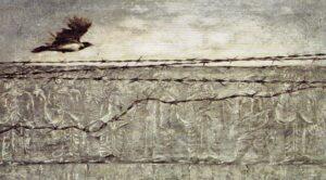 ithaca-462-exil-bengt-berg-zweden